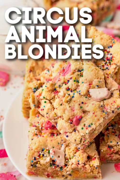 plateful of Circus Animal Blondies with text