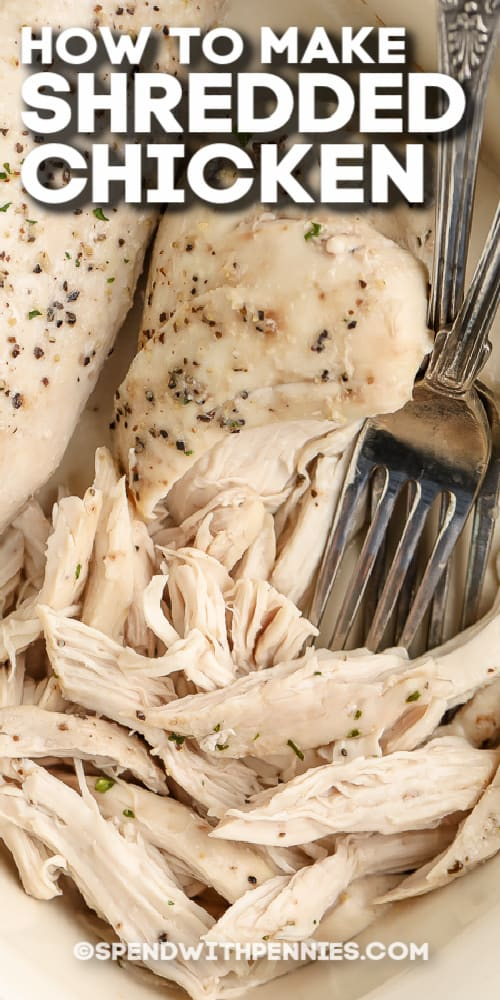 oven shredded chicken breasts and forks with text
