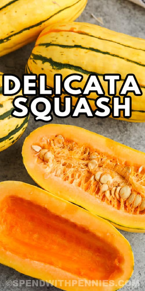 close up of an open squash to show What is Delicata Squash with a title