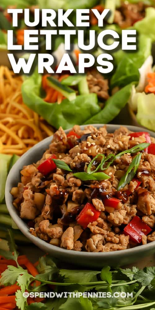 Turkey Lettuce Wraps and filling with text