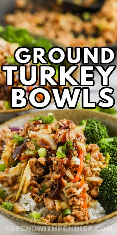 close up of Sesame Ground Turkey Bowls with a title