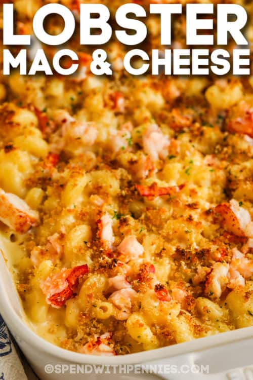 close up of cooked Lobster Mac and Cheese in the dish with writing