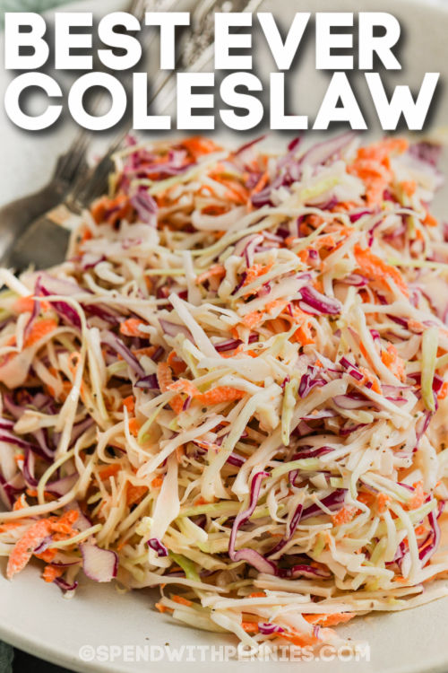plated The Best Coleslaw Recipe with a title